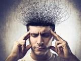 Otak Kanan Vs Otak Kiri, Bisnis Cocok Yang Mana